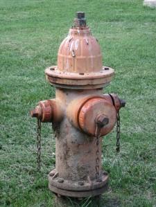 Hydrant-Hopkins