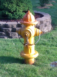 Hydrant-StLouis