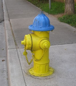 Hydrant-Knoxville