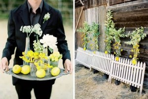 Lemon-wedding-ideas5-1