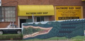 BaltimoreAlligator-01