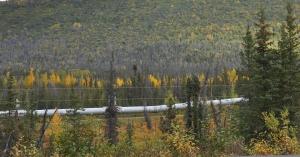 AlaskaPipeline copy