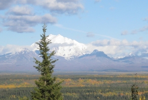Alaska1-02-Detail02