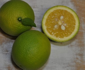 GreenOranges