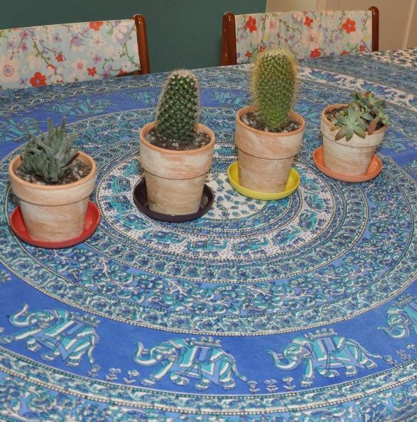 Tablecloth-5
