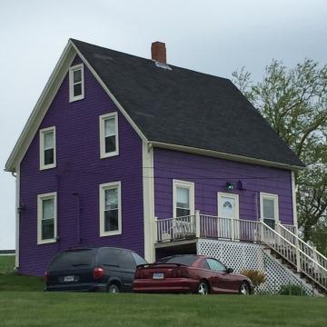 This was the most purplish purple!