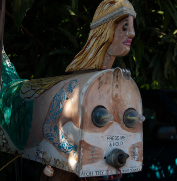 beckygoldsmith-Maui-Day5-3