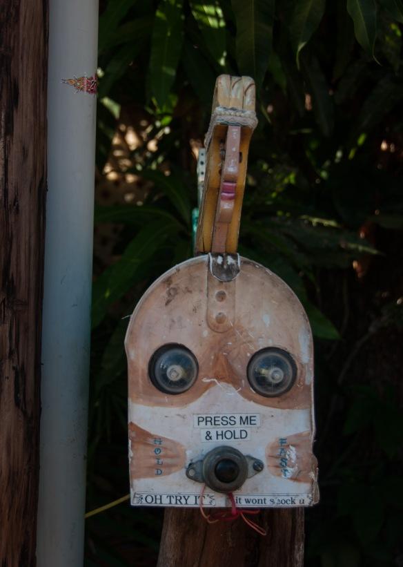 beckygoldsmith-Maui-Day5