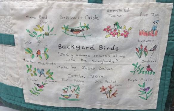 Susan-BackyardBirds-1